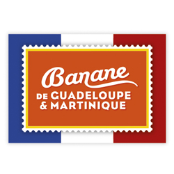 BANANE Guadeloupe Martinique